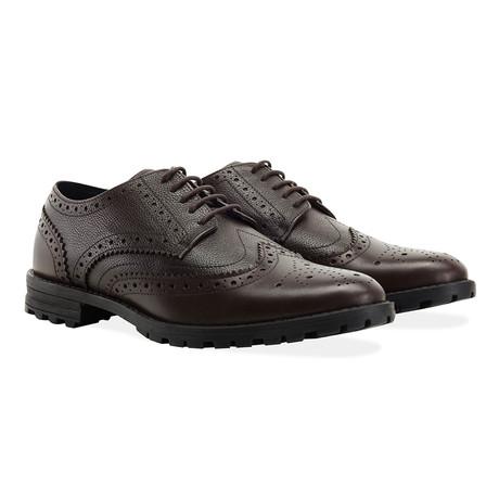 New Edenfield Derby Brogue Shoe // Brown (UK 7)