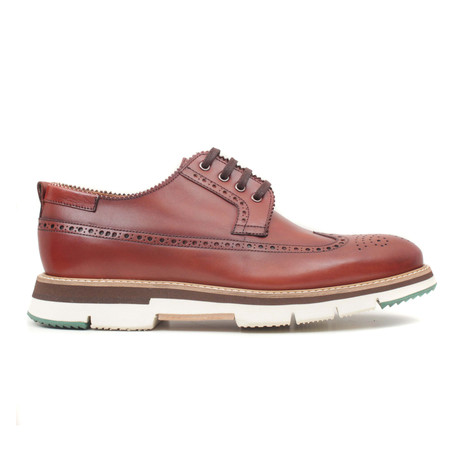 Findik Scala Wingtip Sneaker // Nut Brown (Euro: 40)