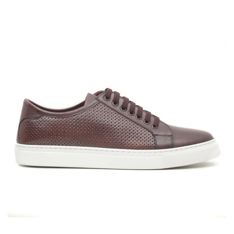 Kahve Scala Sneaker // Brown (Euro: 40)