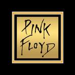 Pink Floyd Dark Side Of The Moon // Signed 24K Gold Plated Record // Custom Frame