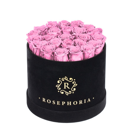 24 Rose Round Box // Pink