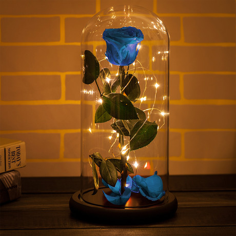 Beauty and the Beast Rose Dome // Blue