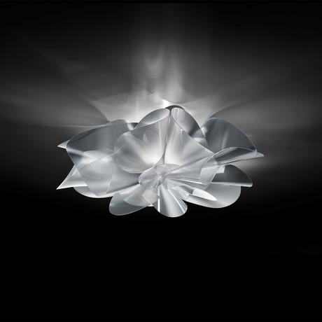 Étoile Ceiling Lamp
