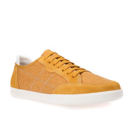 Walee // Ochre Yellow (Euro: 42)