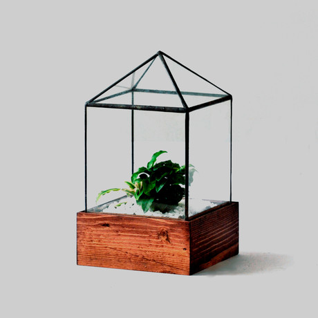 Little House Terrarium