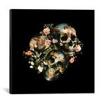 "Skull & Venus // Burcu Korkmazyurek (18"" W x 18"" H x 0.75"" D)"