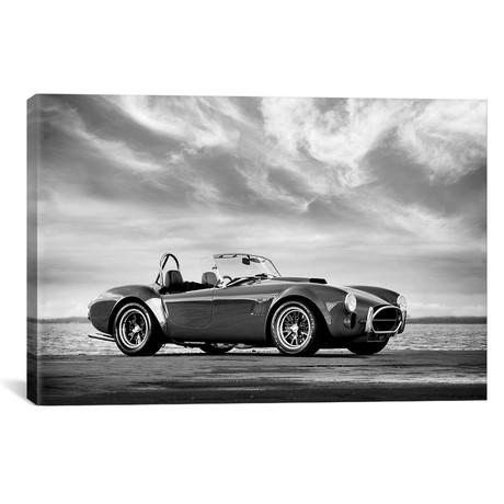 "AC Shelby Cobra // Mark Rogan (18""W x 12""H x 0.75""D)"