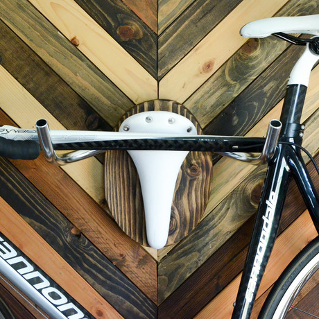 "Bicycle Wall Display // Bicycle Taxidermy // ""The Albino"""