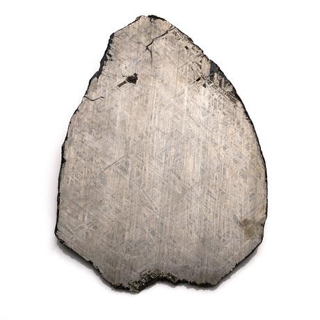 Genuine Muonionalusta Meteorite Slice