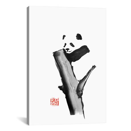 "Panda On A Tree (18""W x 26""H x 0.75""D)"