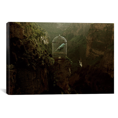 """Caged Away // Shaun Ryken (26""""W x 18""""H x 0.75""""D)"""