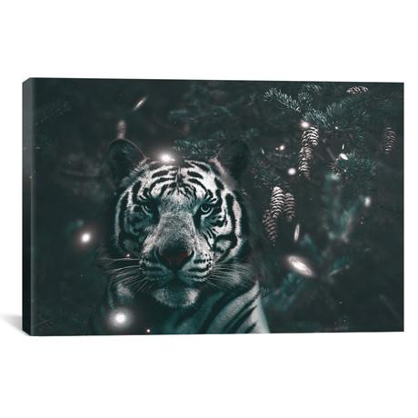 Creeping Tiger // Shaun Ryken
