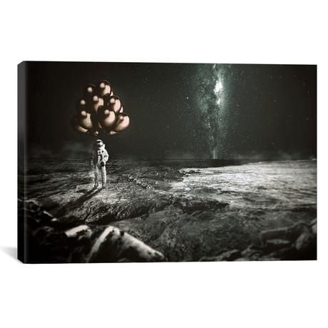 "No Gravity // Shaun Ryken (26""W x 18""H x 0.75""D)"