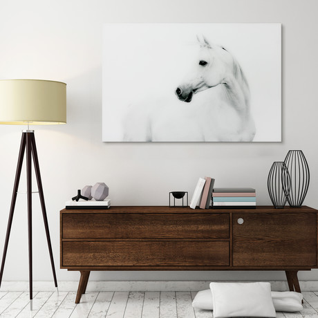 Blanco Stallion Horse // Reverse Printed Tempered Art Glass