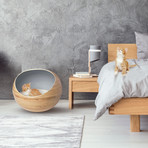 Stylish // Bamboo Cat Bed // Slate