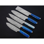 Salmon Blade Chef's Knives // Set of 5