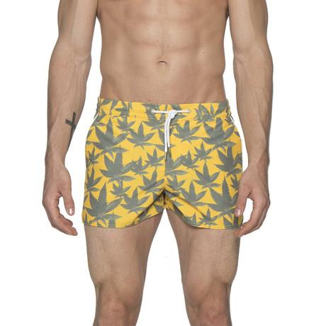 "2"" Barcelona Dry Cloth Swim Shorts // Cannabis Yellow (XS)"