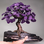 Clustered Amethyst Gemstone Tree // Black Tourmaline Matrix