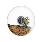 Window Bird Feeder (Small)