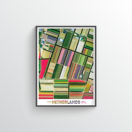 """Dutch Tulips (18""""W x 24""""H)"""