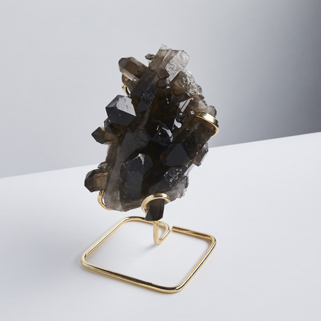 Smokey Quartz // Gold Stand