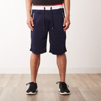Striped Zipper Pocket Two-Tone Racer Sweatshorts // Navy (L)