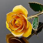Goldenrod Gift