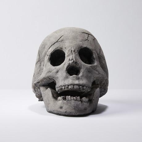 Hollow Human Skull