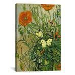 "Butterflies and Poppies // Vincent van Gogh (18""W x 26""H x 0.75""D)"