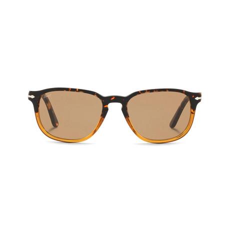 Classic 3019 Sunglasses // Tortoise Caramel + Brown