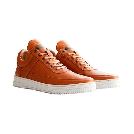 G.Vasari Sneakers // Cognac (Euro: 40)