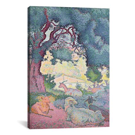 "Landscape with Goats // Henri-Edmond Cross // 1895 (18""W x 26""H x 0.75""D)"