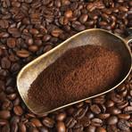 Dynasty Gran Café Cru Classé Premier Grand Cru Coffee