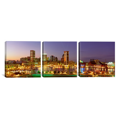 "City at night viewed from Federal Hill Park // Baltimore (36""W x 12""H x 0.75""D)"