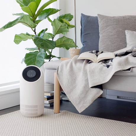 FLO Air Purifier & Odor Eliminator