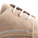 Manchester Suede // Taupe (Euro: 43)