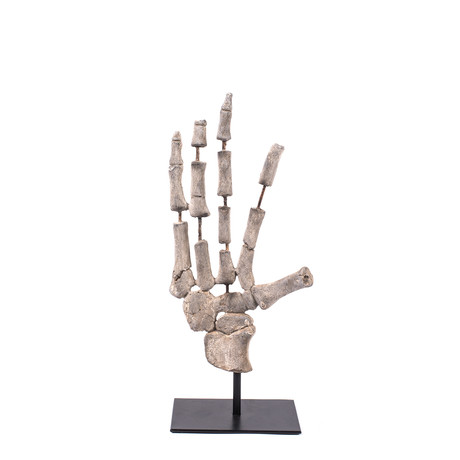 Decorative Skeleton Hand Polyresin