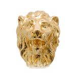 Golden Lion Cane