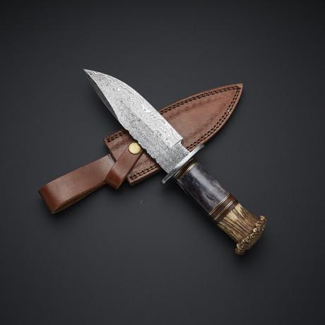Damascus Hunting Knife // 31