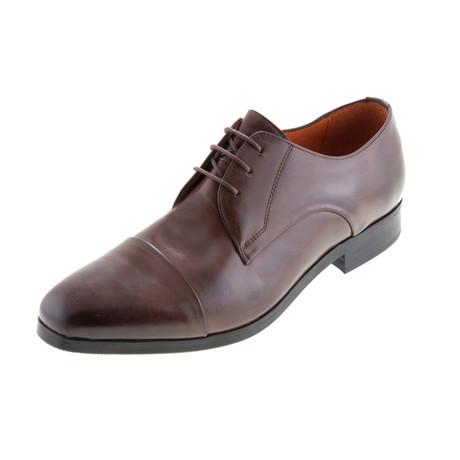 MT2210 // Derby Shoe // Brown (Euro: 40)