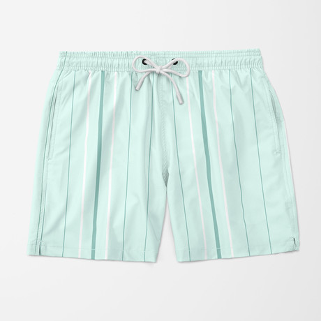 Vice Stripe Swim Trunks // Light Green (S)