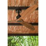 Faro Barcelona // Just Fan Black Walnut Wood
