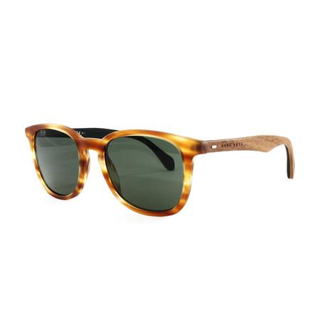 Hugo Boss // Men's 843S Sunglasses // Honey Brown + Green