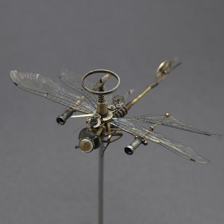 Odonata // Anaciaeschna Jaspidea
