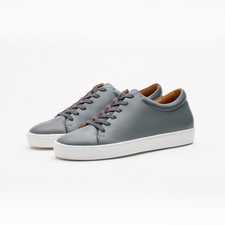 Royal Shoe // Gray (Euro: 40)