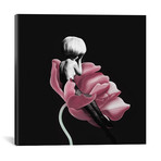 """Parfum For You I (18""""W x 18""""H x 0.75""""D)"""