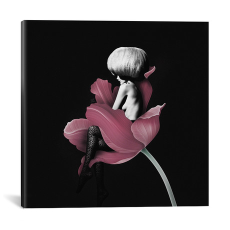 "Parfum For You IV (18""W x 18""H x 0.75""D)"