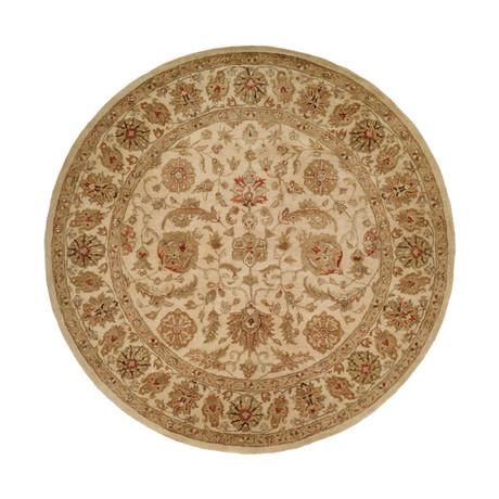 Terzo Traditional // Ivory (2' x 3')