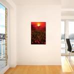 """Warm Sunset // Marco Carmassi (12""""W x 18""""H x 0.75""""D)"""