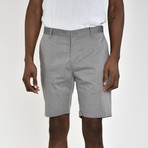 Tech Fabric Shorts // Gray (34)